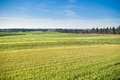 Blue sky and green grass field of Stock Photo