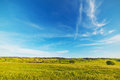 Blue sky over a green field Royalty Free Stock Photo