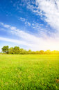 Blue sky over the green meadow. Royalty Free Stock Photo