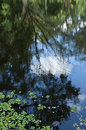 Blue Sky reflection on water, selective focus Royalty Free Stock Photo