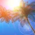 Blue sky with summer sun burst background. Royalty Free Stock Photo