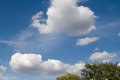 Blue sky, white clouds and the tops of trees on a day Royalty Free Stock Photo