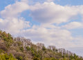 Blue sky with white puffy clouds above a wooded area Royalty Free Stock Photo