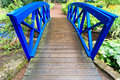 Blue small bridge over river stream creek in garden nature green and landscape Stock Images