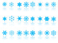 Blue snowflakes on white background with reflection Royalty Free Stock Photo