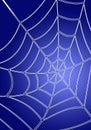 Blue spiderweb Royalty Free Stock Photo