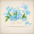 Blue spring flowers forget me not greeting card floral postcard banner shadows text best wishes beige background retro style Stock Photography