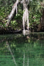 Blue spring state park florida usa is a located west of orange city in the united states the is a popular tourist Royalty Free Stock Photography