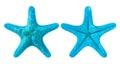 blue starfish Royalty Free Stock Photo
