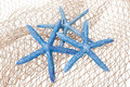 Blue starfish on a net Royalty Free Stock Photo
