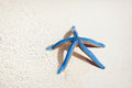 Blue starfish on tropical beach Stock Image