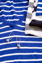 Blue striped sweater and earring Stock Images