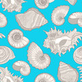 Blue summer seamless background different shells Stock Photography