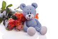 Blue teddy bear with roses pink Stock Photography