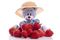 Blue teddy bear with strawberries cute hat and fresh Royalty Free Stock Images
