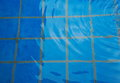Blue tiles in swiming pool wit water wave Royalty Free Stock Photo
