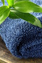 Blue  towel with a green bamboo branch Stock Images