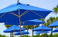 Blue umbrellas group of by the beach Stock Photo