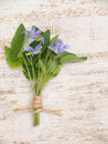Blue viola flowers bouquet tied with jute rope