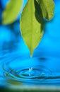 Modrý voda