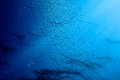 Blue water ripples underwater, texture and backgrounds Royalty Free Stock Photo