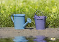 Blue watering can bucket purple stand near the water Royalty Free Stock Photos