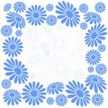 Blue-white chamomiles Royalty Free Stock Photography