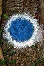 Blue And White Circle.