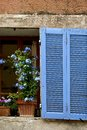 Blue window shutter with and flowerpot in provence in france Royalty Free Stock Images
