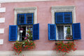 Blue windows with geraniums beautiful in sibiu romania Stock Photos