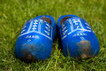 Blue wooden shoes in the grass Stock Photography