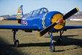 Blue And Yellow Air Screw Spor...