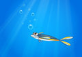 A blue yellow fish under the sea illustration of Royalty Free Stock Photos