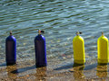 Blue and yellow scuba tanks bunch of sitting in a fresh water lake Royalty Free Stock Image