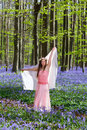 Bluebells Fairy