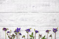 Bluebells flowers on white wooden table. Top view, copy space. Royalty Free Stock Photo