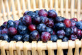 Blueberries in basket Royalty Free Stock Photo