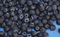 Blueberries blue fruit Royalty Free Stock Photo
