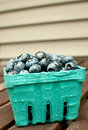 Blueberries box container side view carton Royalty Free Stock Photos