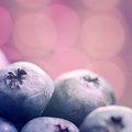 Blueberries close up fresh very Stock Photo