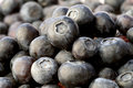 Blueberries close up of healthy fresh Stock Images