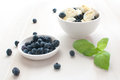 Blueberries and eggs salad Royalty Free Stock Image