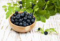Blueberries fresh ripe on a wooden background Stock Photos