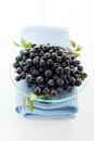 Blueberries hill ripe on a glass plate on a white background Stock Photos