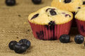 Blueberries muffin Stock Photo