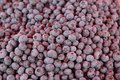 Blueberries pile Royalty Free Stock Photo