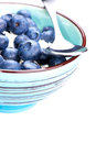 Blueberries and ricotta cheese in a bowl on white wooden table Royalty Free Stock Photography