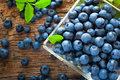 Blueberries ripe in small bowl Royalty Free Stock Photography