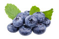 Blueberries some fresh with mint Royalty Free Stock Images