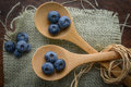 Blueberries on a spoon with burlap woven background Royalty Free Stock Photo